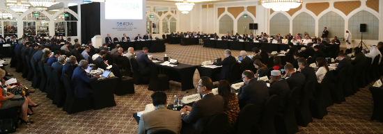 IRENA Council meeting